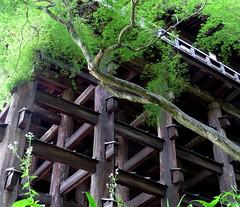 Another view of Kiyomizu Stage, Kyomizu-dera (Buddhist Temple), Kyoto, Japan, July 2014