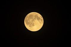 Moon050415