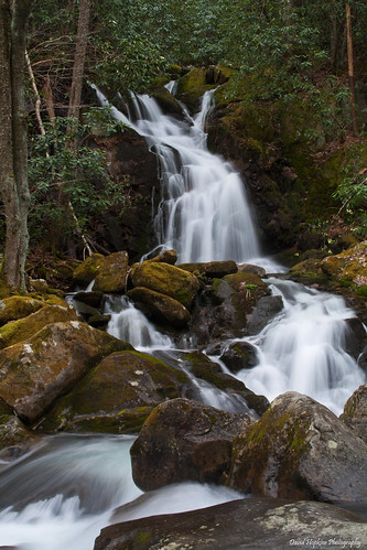 longexposure nc moss rocks hiking northcarolina hike rhododendron bigcreek greatsmokymountainsnationalpark gsmnp mousecreekfalls davidhopkinsphotography