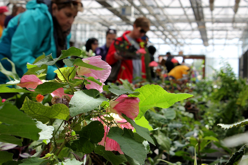 Farm to Table: Ag Day 2015 highlights local foods