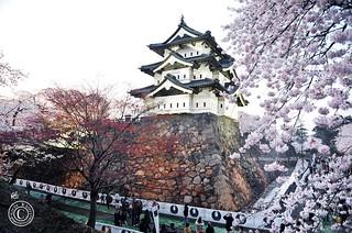 Hirosaki Castle. © Glenn E Waters. Japan 2015.