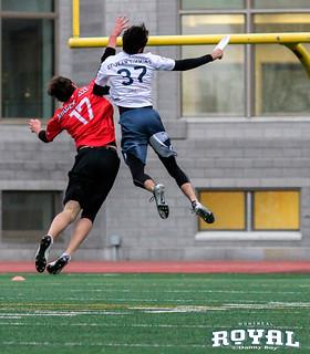 AUDL Ultimate Frisbee - Royal de Montreal vs Toronto Rush