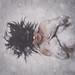 Snow White by Morne Prinsloo