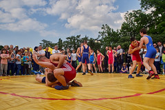 individual sports, contact sport, sports, combat sport, freestyle wrestling, greco-roman wrestling, grappling, wrestling,