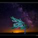 Night Sky, Killbear Provincial Park by Marc Aubin2009