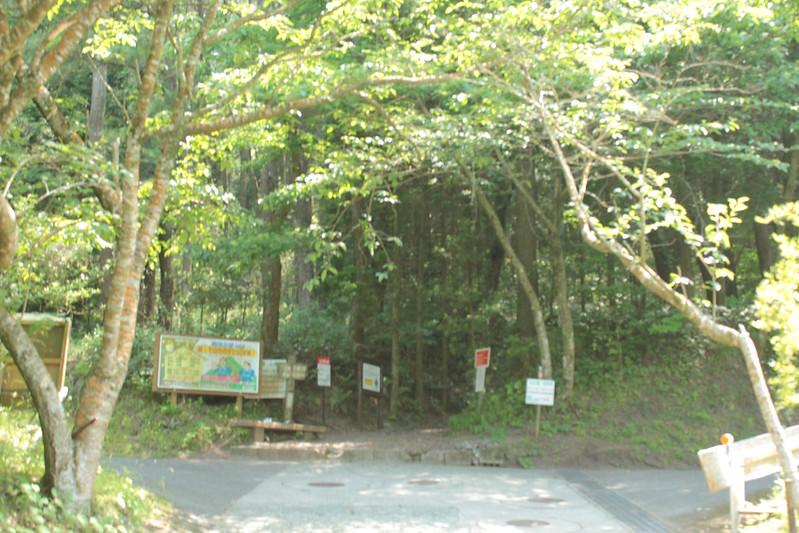 20140531-開聞岳-0241.jpg