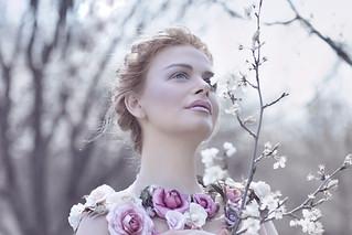 The Spring Fairy II