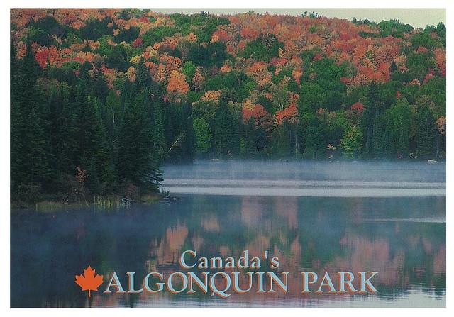 Canada - Algonquin park 2