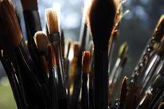 macro photography(1.0), close-up(1.0), brush(1.0),