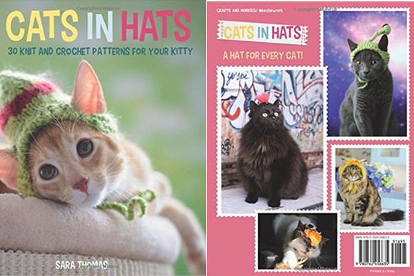 cats-in-hats-wide