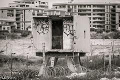 Concrete and Graffiti