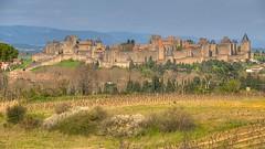 Carcassonne, France_DSC1389