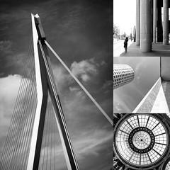 Rotterdam + Den Haag  #architecture #details Kurztrip Niederlande  #summerinthecity #happy #life