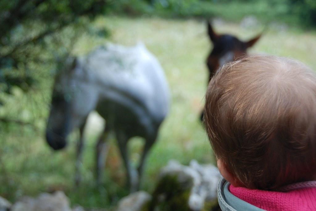 Descubriendo el mundo en su mochila, Eva también va al campo en ella.