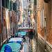 Venice 2015 (12) by Dibbly Dobbler