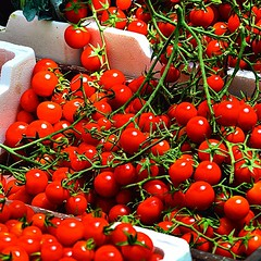 #cherry #tomatoes #bahrain #harvest #vegetables #crop #colour