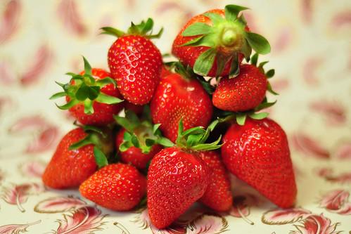 frische Erdbeere Erdbeeren mit Sahne Erdbeerzeit altes Rezept Erdbeerrezept Erdbeeren Erdbeermark eingeweckt Sütterlin Kurrentschrift Foto Brigitte Stolle