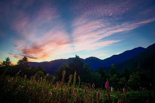 """park travel mountain sport canon landscape nationalpark outdoor sony taiwan hike national kaohsiung peaks 台灣 臺灣 tw taitung superwide 信義鄉 中央山脈 ef1740mmf4lusm 南二段 百岳 sonyalpha yushannationalpark 玉山國家公園 臺灣省 八通關古道 mountain"""" 100peaksoftaiwan 觀高山屋 taiwantop100peaks yushannationalpark玉山國家公園 sonya7r thecentralrange southernsectiontwotrail guangaohikingservicestation"""