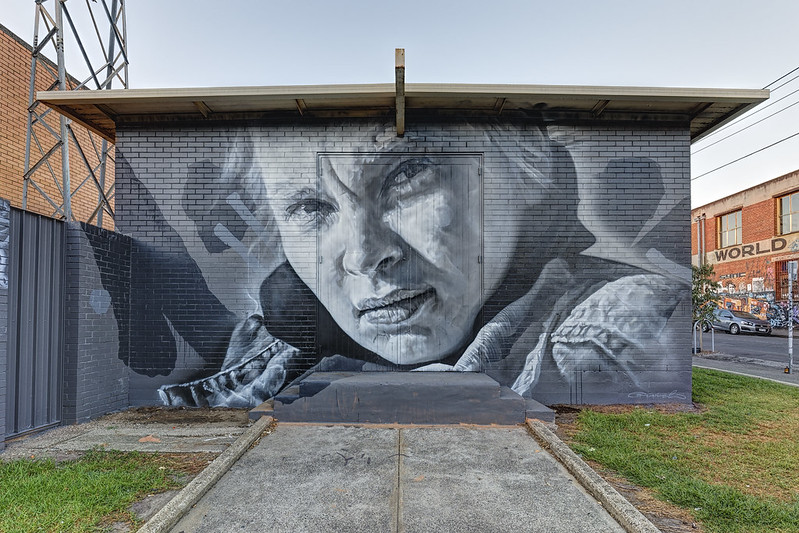 Guido Van Helten Askew Collingwood 2015-04-11 (_MG_0145-7)