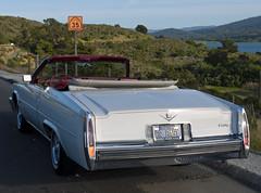lincoln mark series(0.0), full-size car(0.0), lincoln continental mark v(0.0), cadillac eldorado(0.0), automobile(1.0), automotive exterior(1.0), cadillac(1.0), vehicle(1.0), antique car(1.0), sedan(1.0), land vehicle(1.0), luxury vehicle(1.0), motor vehicle(1.0),