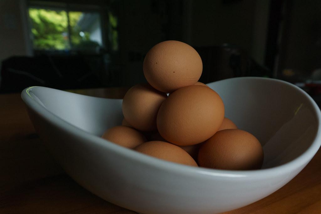 Local, Organic Eggs