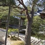 Kyoto_20150505-45