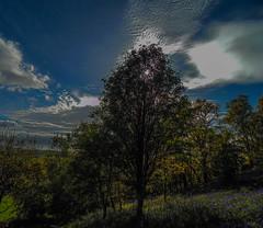 Duncryne Hill