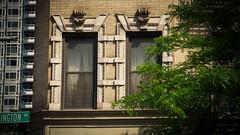 Rose Hill windows
