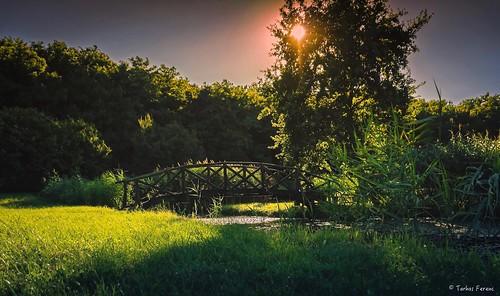 ngc travel beautyfull nice sunset sony next ilce a6300 hungary magyar zemplén sárospatak epz18105mmf4goss 18105mm sonyflickraward sonyflickrawardgold
