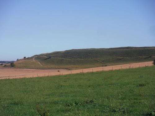 Maiden Castle, from near Clandon Farm