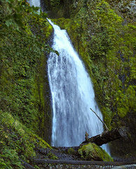 Columbia Gorge Wilderness