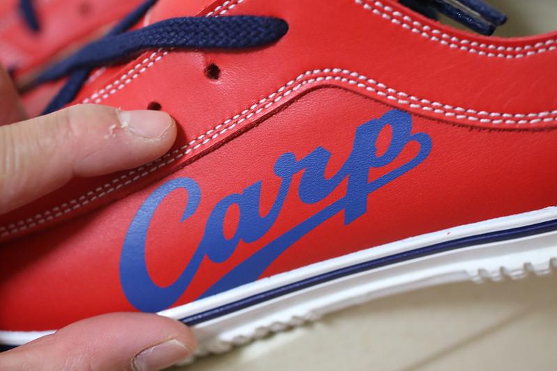 SPINGLE_carp-7