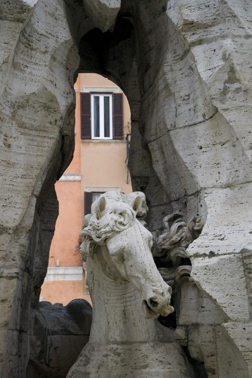 Cavallo Fontana dei Fiumi Piazza Navona