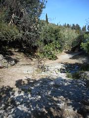 Καθαρισμός της Κοιλάδας της Ψίνθου (Κυριακή 26/04/2015)