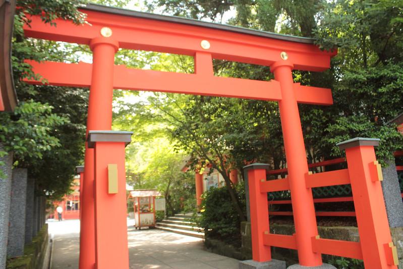 20140531-開聞岳-0167.jpg
