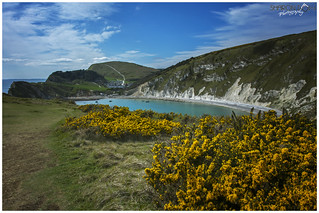 Looking West over Lulworth Cove
