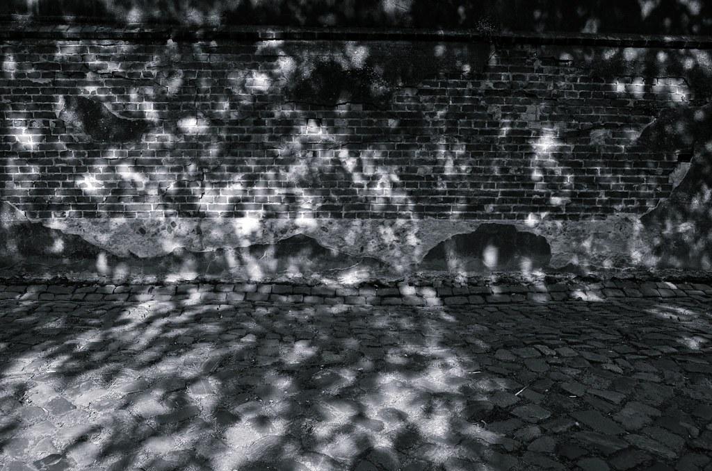 luz y sombra