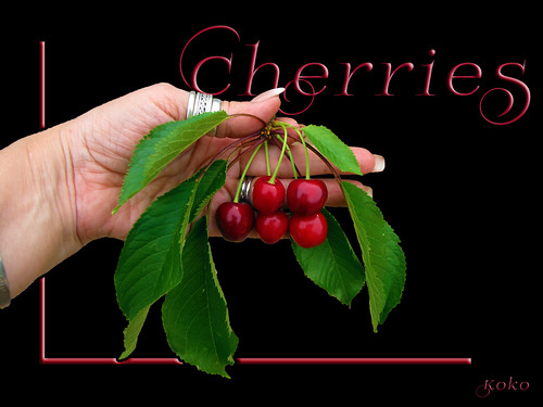 Cherries Groß Inzersdorf