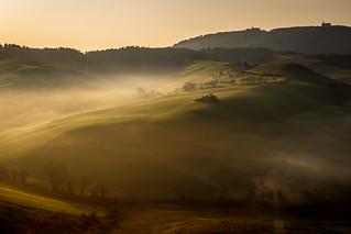 mistic morning
