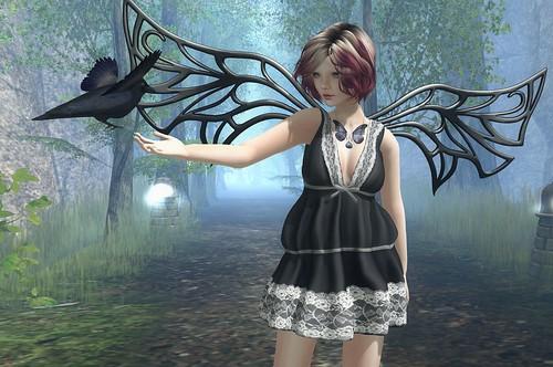 crow faery...