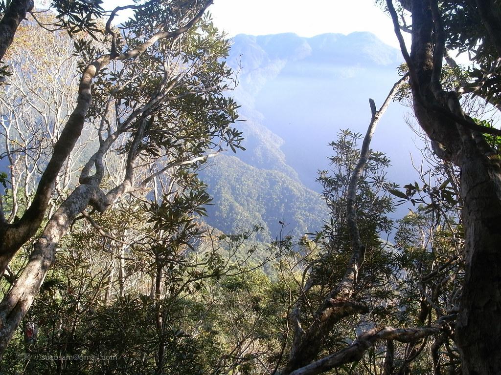 上富太山前展望