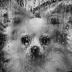 Sad Dog #dogs #dog #sad #saddog #blackandwhite #animals #blackandwhitephotography #blacknwhite #blancetnoir #blancoynegro #bnw #rain