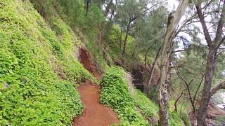 Hana Trail