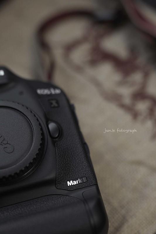 16-09-22EOD 1D-X MarkⅡ0003