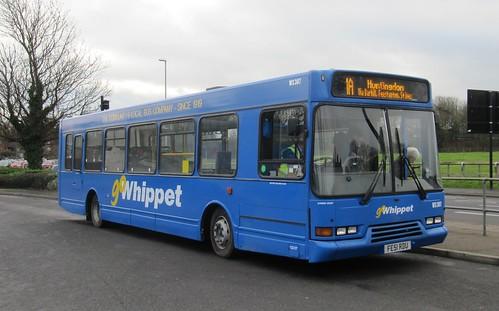 Go Whippet WS307 FE51 RDU