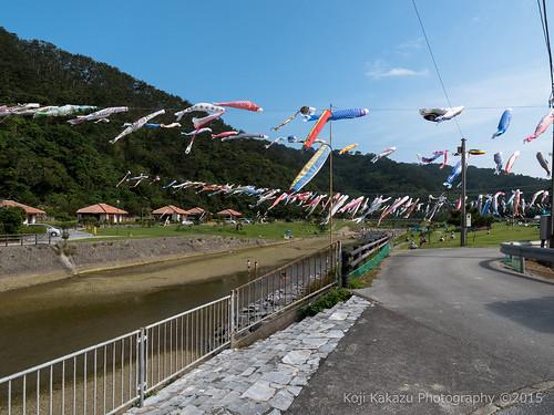奥ヤンバル鯉のぼり祭り-92