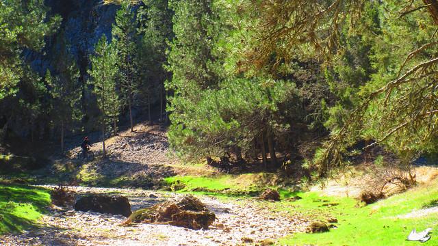 2015_04_04_Cañón del Río Lobos_045