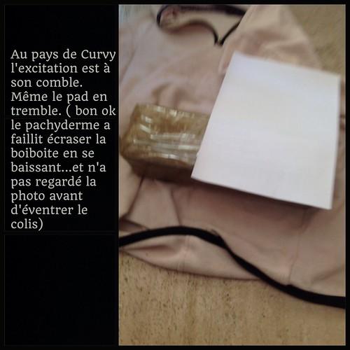 [ famille Mortemiamor ] tranches de vie 2 - Page 59 16890924487_d53a74f622