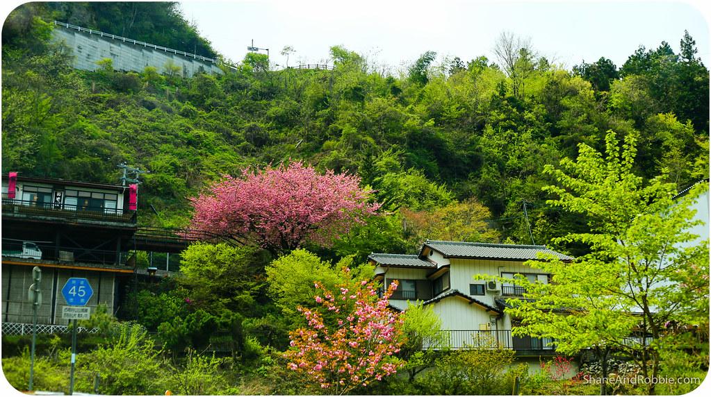 2015-04-21-20150421(Canon EOS 6D)-00100