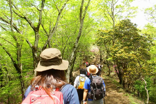 2014-05-24_00163_鍋割山.jpg
